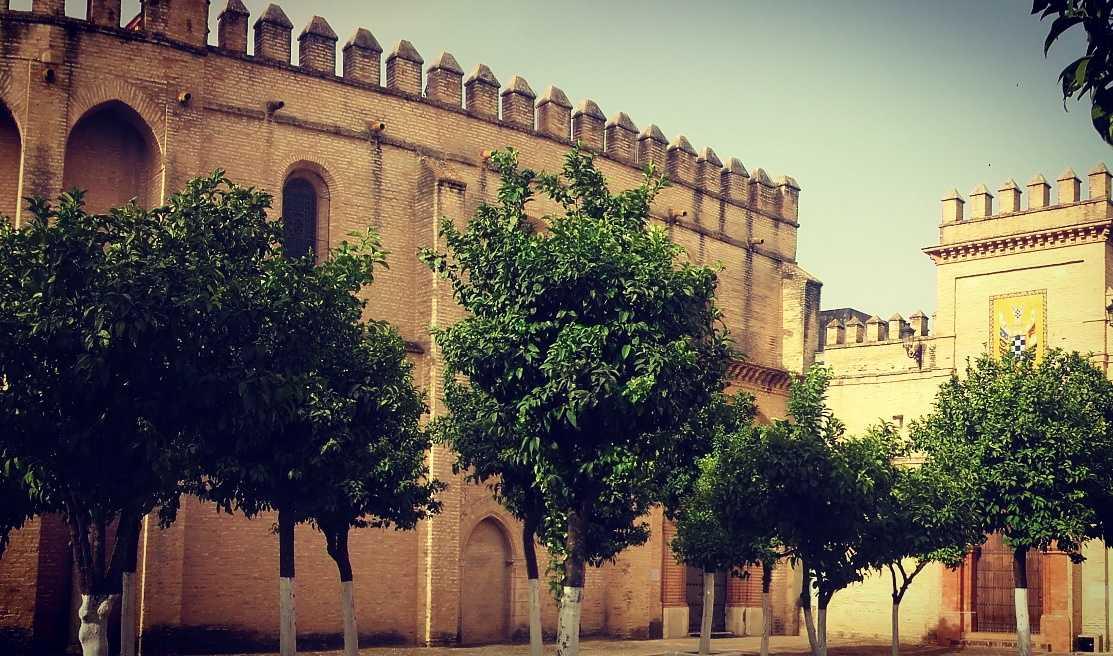 San Isidoro del Campo. Tras la biblia del