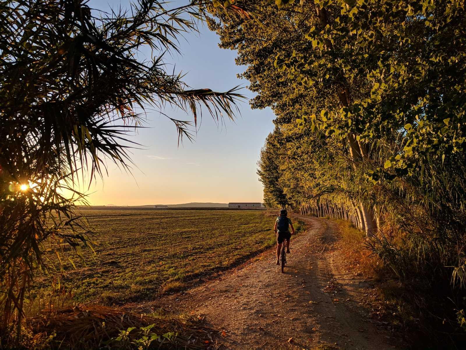 Hamelin: Lugares Lorquianos en bici - Actividad  (Pinos Puente)