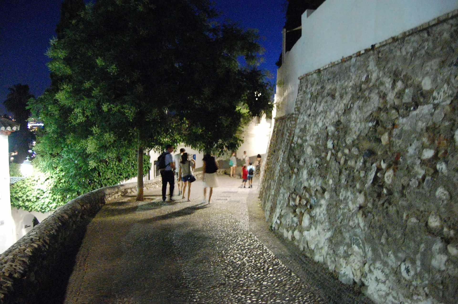 Hamelin: Paseando Granada: Albaicín Patrimonio de todos - Actividad  (Granada)