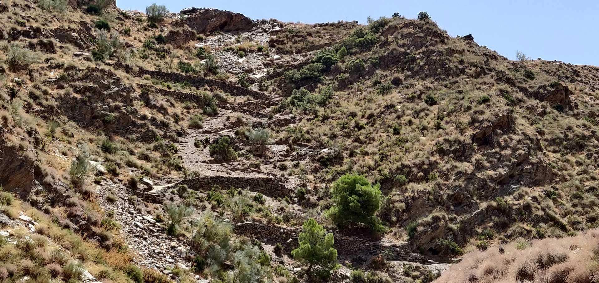 Camino antiguo a Macael Viejo