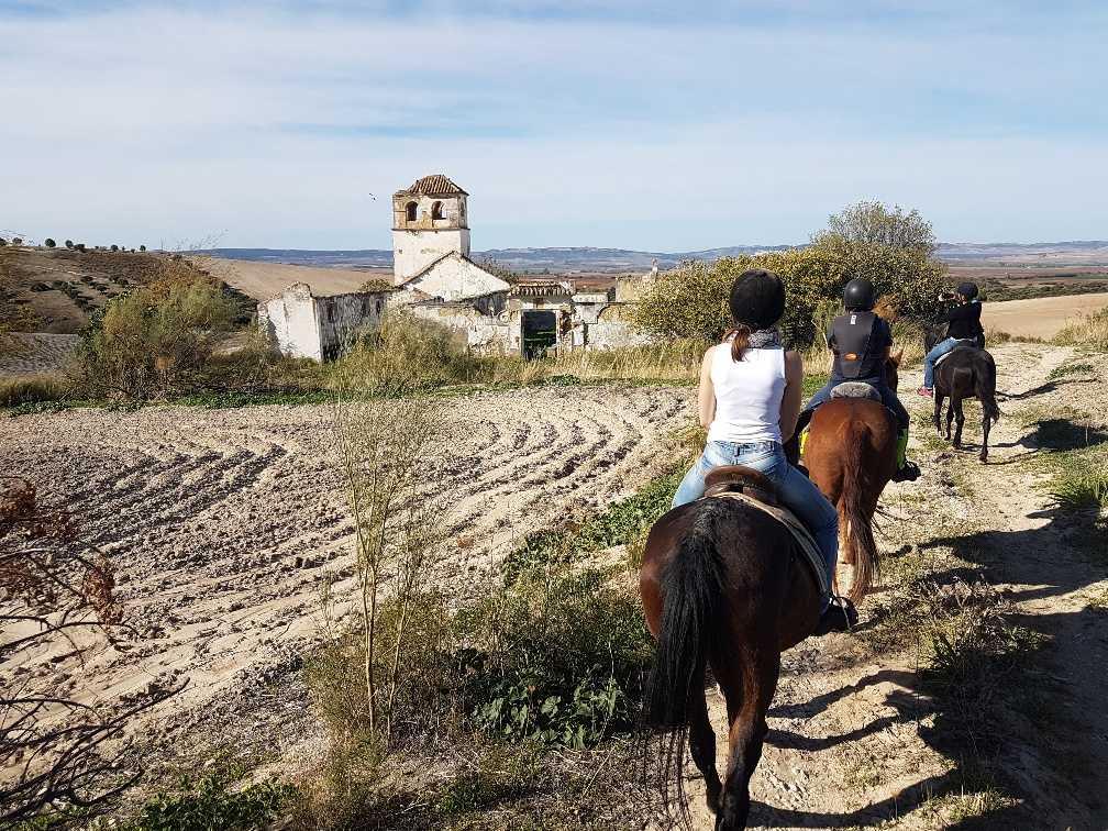 Paseo a caballo con la puesta del sol
