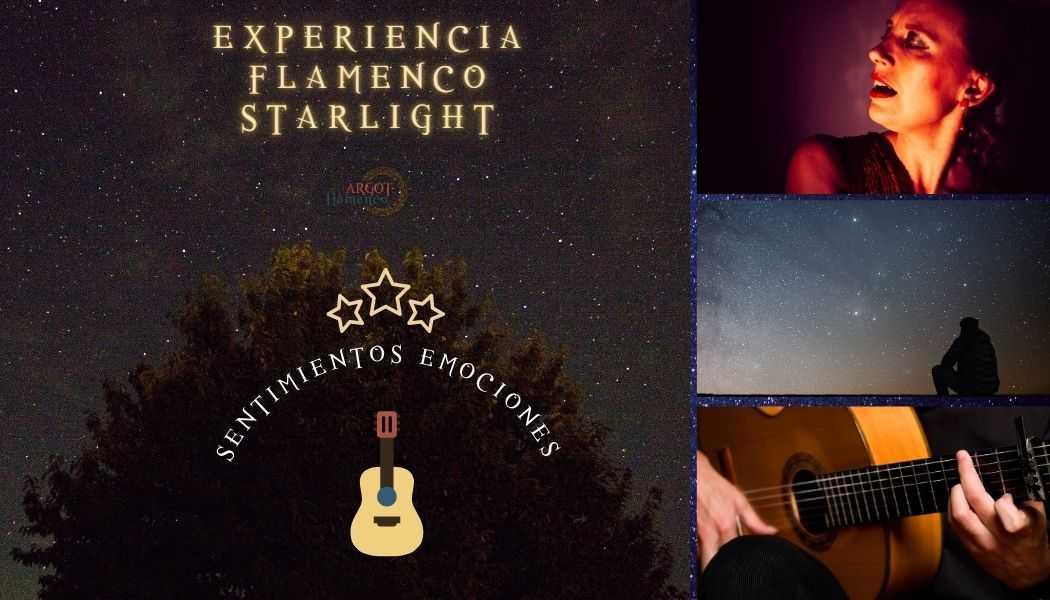 Expérience Flamenco Starlight