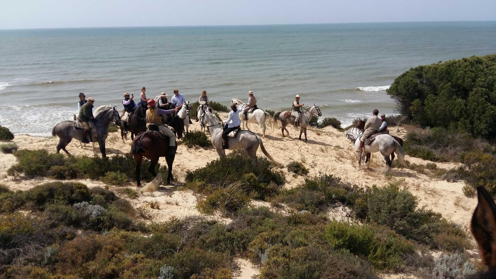 Paseo a caballo por playa y Doñana