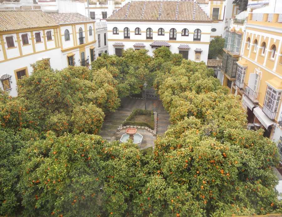 Plaza Doña Elvira
