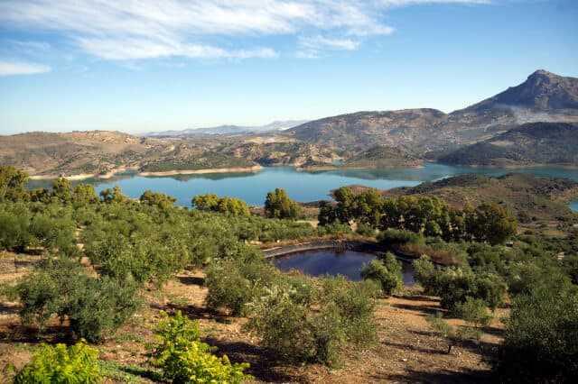Excursión privada a Los Pueblos Blancos y Ronda desde Sevilla