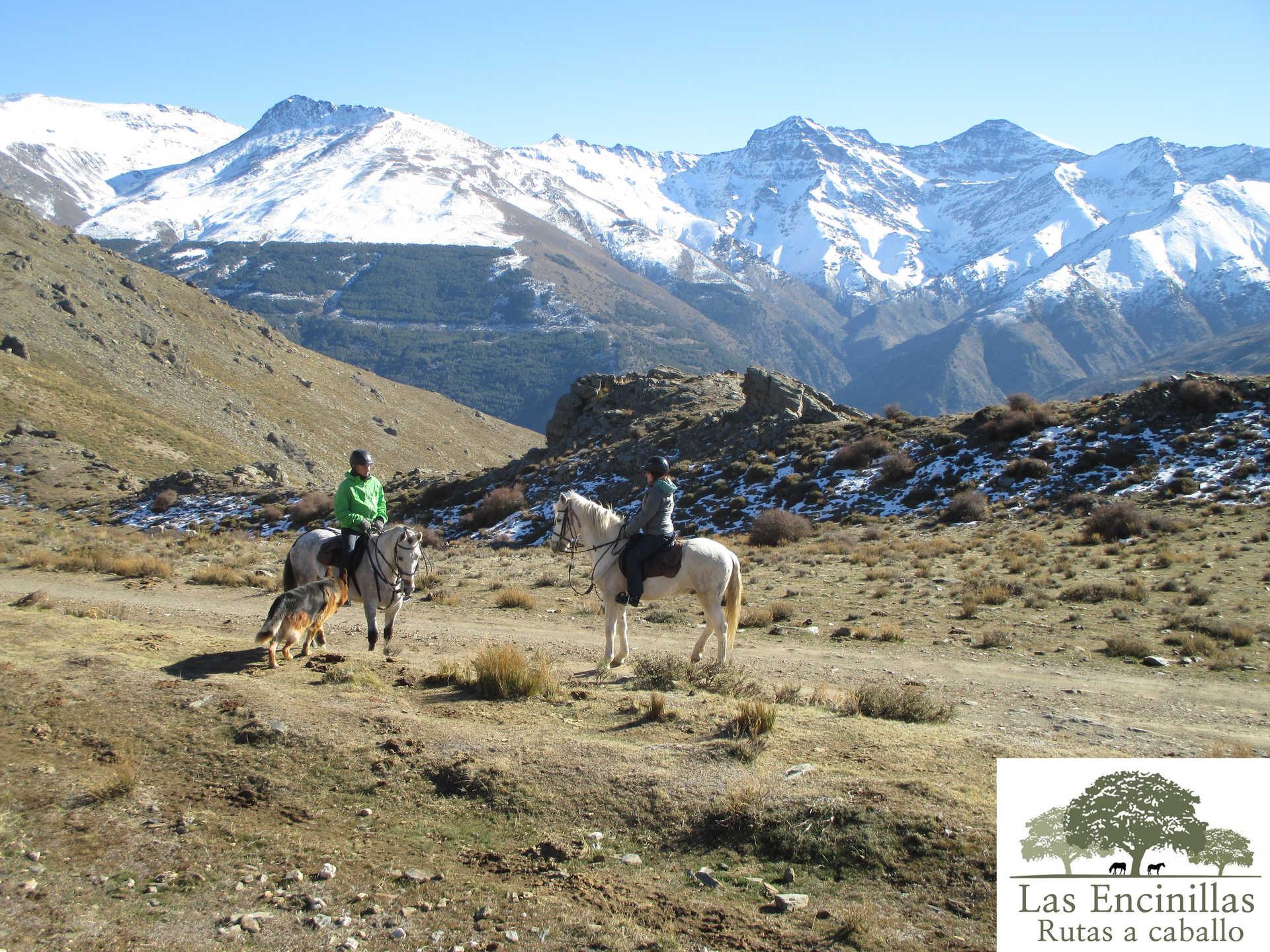 Naturaleza: Ruta a Caballo en Sierra Nevada
