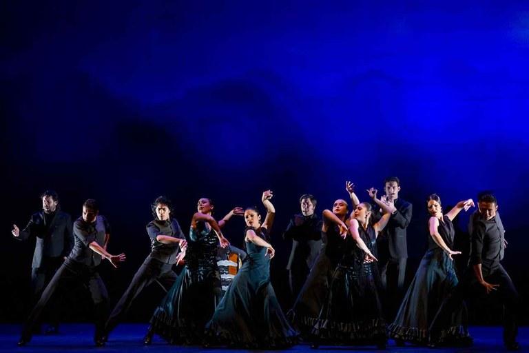 Ballet Flamenco de Andalucía. 25 aniversario