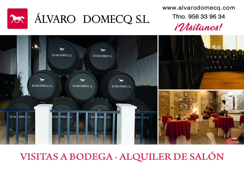 Visita guiada a bodega con degustación de 3 vinos
