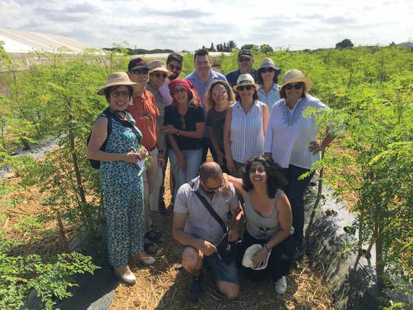 Ecotour Moringa: ¡Descubre el Árbol de la Vida!