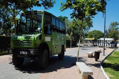 Adéntrate en el corazón de Doñana en una exclusiva ruta en 4x4