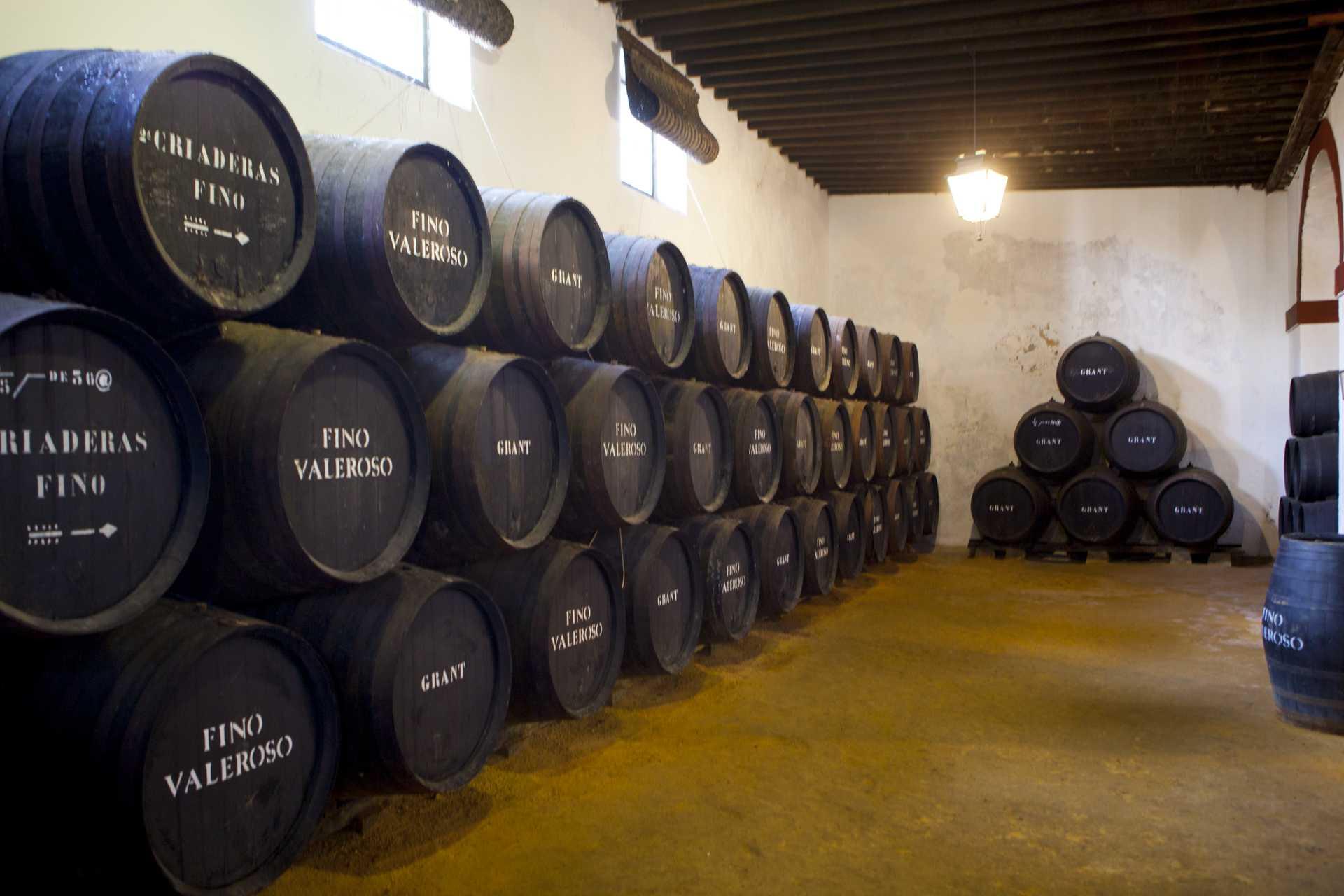 Denominaciones De Origen Vino Web Oficial De Turismo De Andalucía