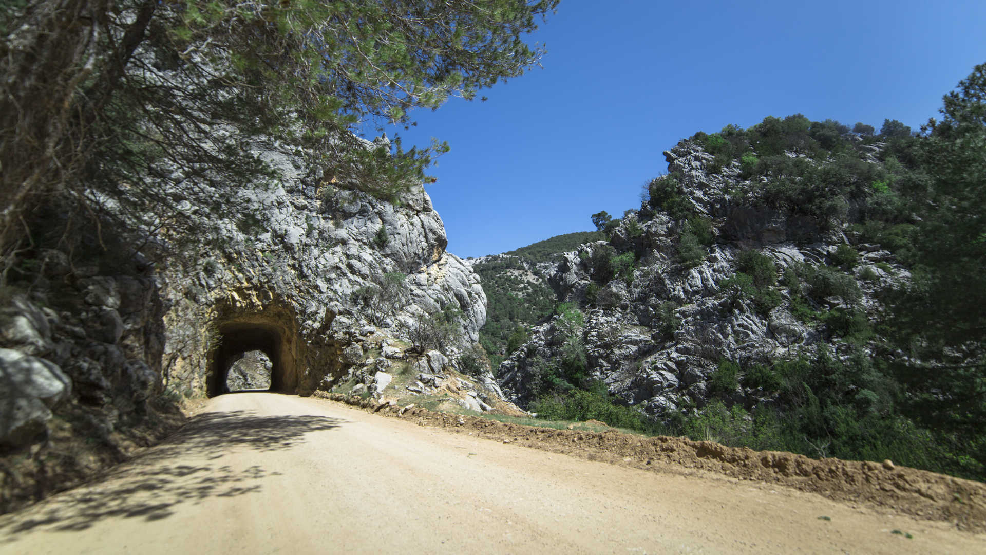 https://multimedia.andalucia.org/media/5E2F1D757B7446FCA3CAC98E8D3BAAC7/img/4DB349B7F8024F5C89178EF791259926/6-4_Camino_hacia_el_nacimiento_del_Guadalquivir_Sierra_de_Cazorla_Jaen.jpg?responsive
