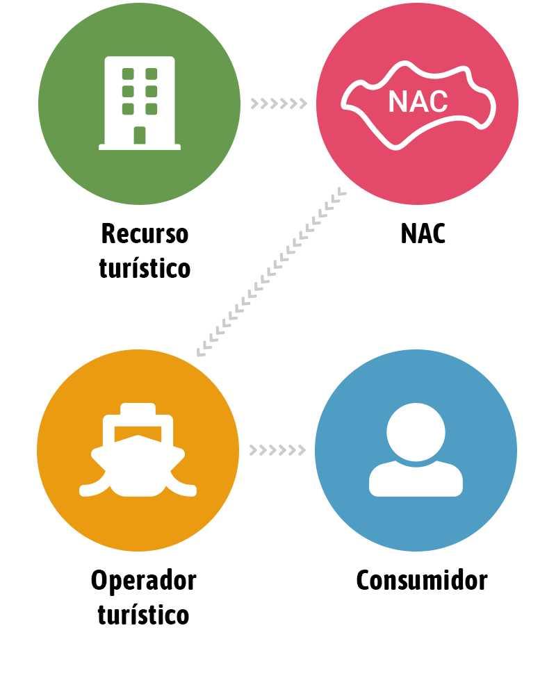 Infografía NAC