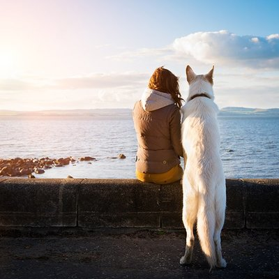 Outdoor activities with your pet in Malaga