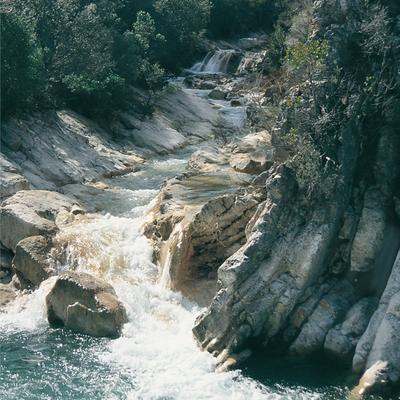 Andalucía Natural
